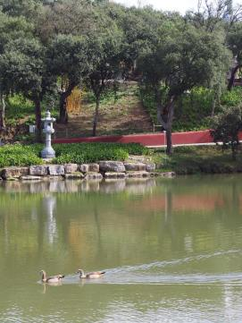 Lago de Pagode